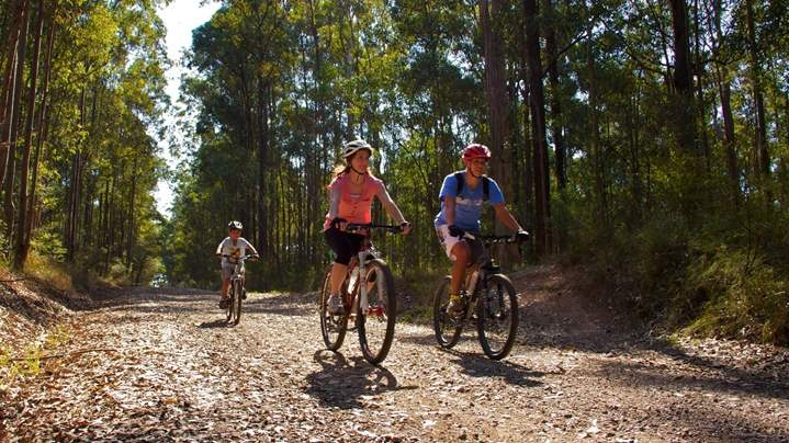 Family rides bicycles in Daisy Hill Conservation Park